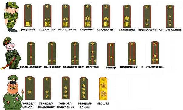 Все звания в российской армии в картинках