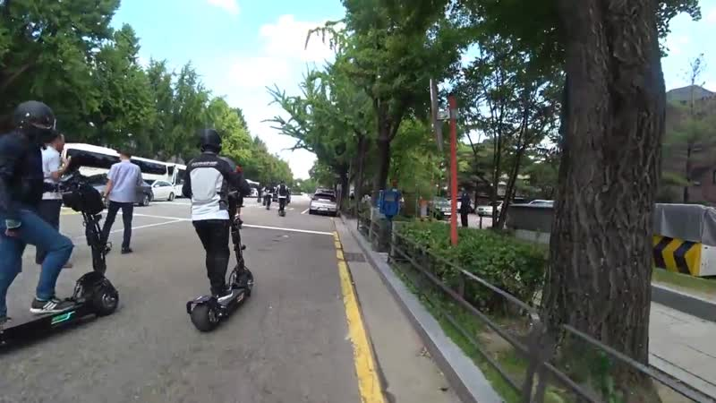 WEPED ver.R
