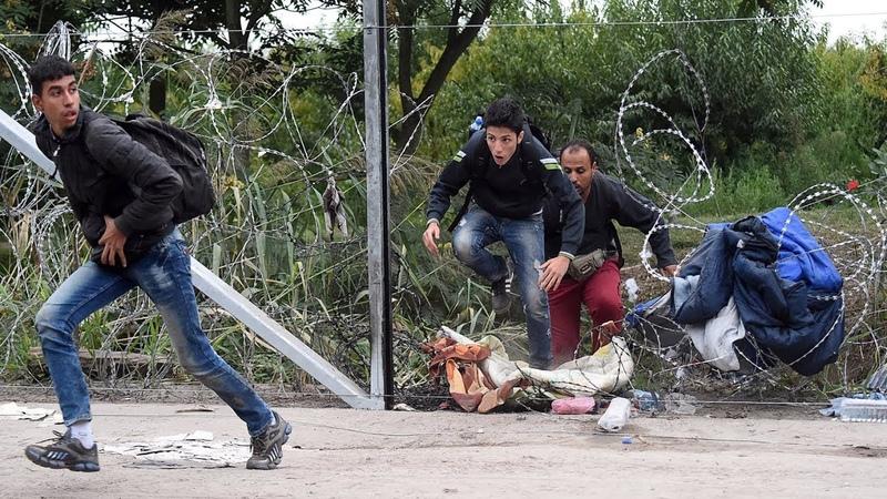 SophieCo. Есть угроза новой большой волны мигрантов в Европу — глава МИД Венгрии