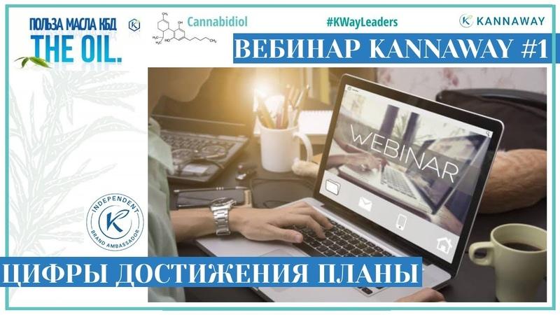 Вебинар KannaWay 1 цифры перспективы качество
