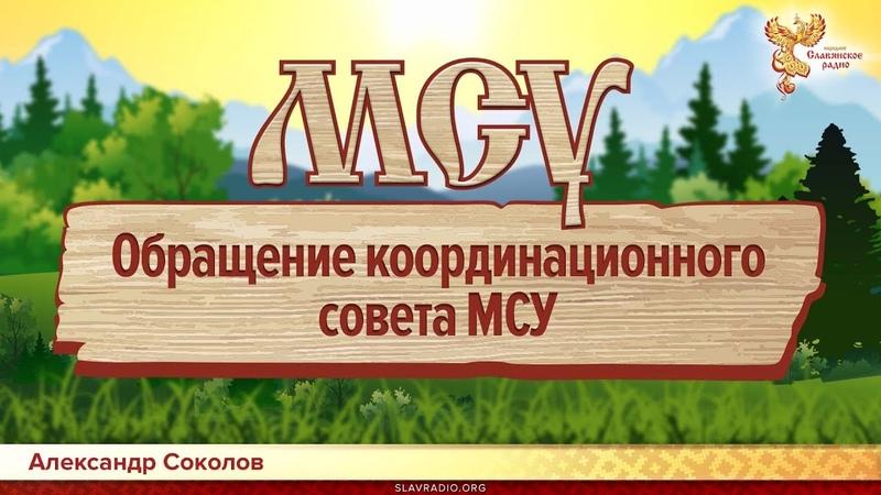 Обращение координационного совета МСУ. Алексей Орлов и Александр Соколов