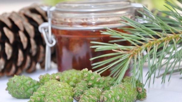 Варенье из сосновых шишек от кашля.