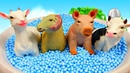 Farm Animals Kids Songs Nursery Rhymes Learn Animal Names and Sounds on the Farm