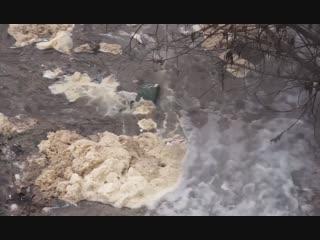 В Подмосковье сточные воды сливают в реку