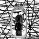 pyrokinesis - Терновый венец эволюции