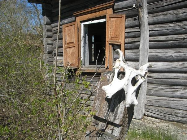 Дом ведьмы в Чернобыльской деревне