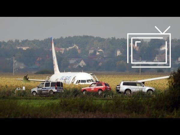Чудо на кукурузном поле. Эксперты и очевидцы об аварийной посадке Airbus A321
