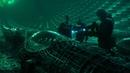 Загадочные сцены фильма Аванпост : масштабная перестрелка и столкновение с неземным