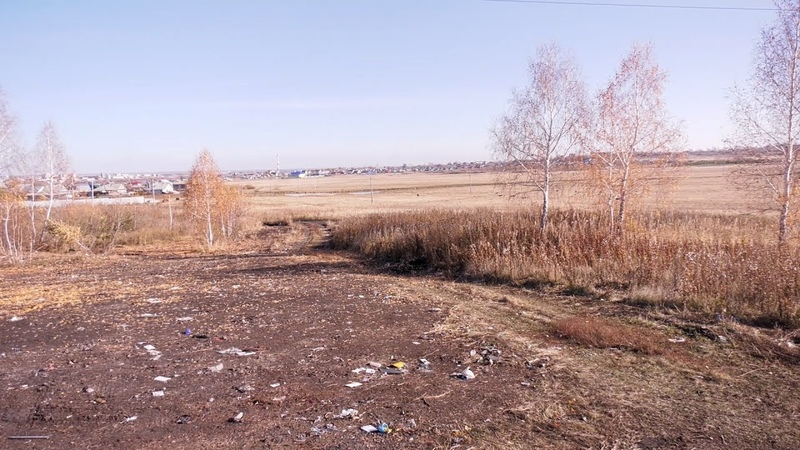 Комитет городского хозяйства продолжает работу по очистке города от несанкционированных свалок
