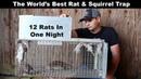 The World's Best Rat Squirrel Trap. The Uhlik Repeater part 2 - Mousetrap Monday