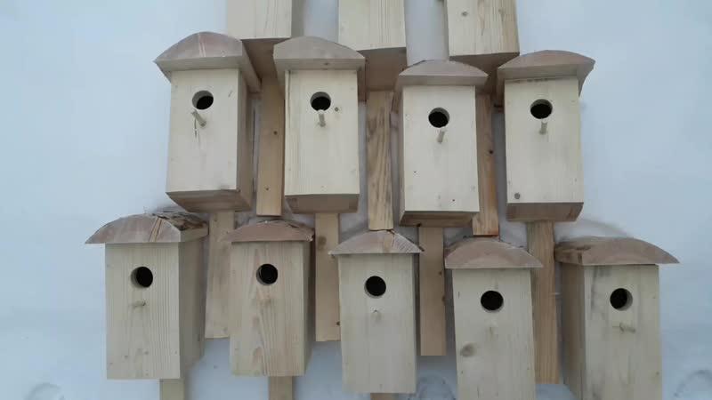 пение птиц ДЕЛАЙТЕ ГРОМЧЕ.синичник скворечник белка бельчатник ласточка дятел домик
