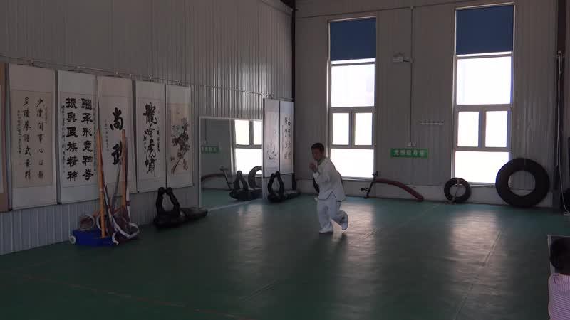 Демонстрация стиля синъицюань на конференции 19 20 мая 2019 г в Шеньчжоу Хэбэй