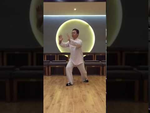 4 shi an shi в исполнении Мастера Ван Лина