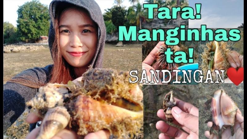MANGINHAS TA SA SANDINGAN!   LETS GET SOME SEASHELLS   LOON BOHOL PHILIPPINES