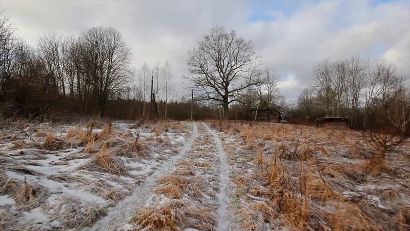 Прогулка по зимней лесной дороге к дому на болоте | Winter road to house on swamp, meditative video