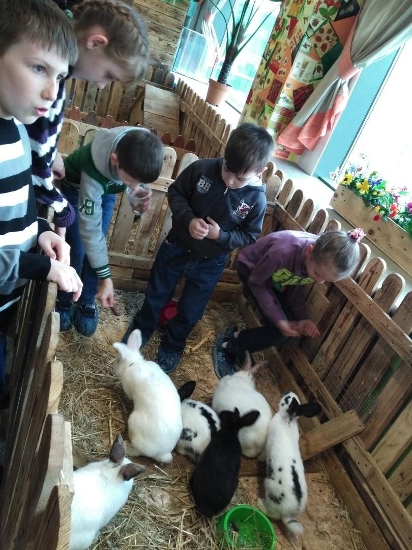 Воспитанники интерната посетили зоопарк Дворик