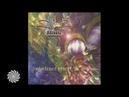 Fluro Conspiracy - Stylophone