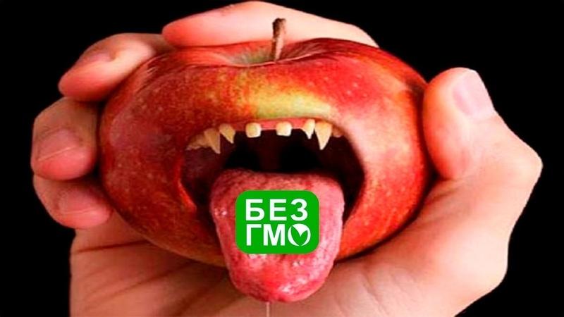 ГМО генетическая бомба Фильм 2 Реж Г Царёва