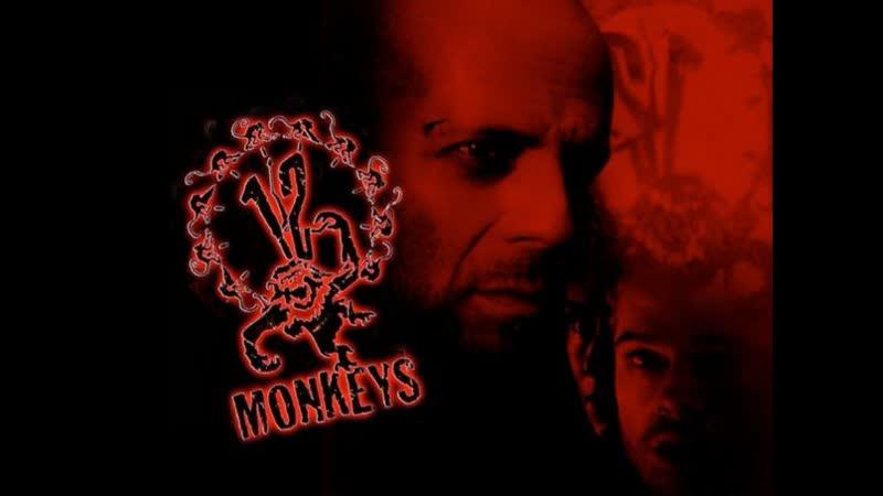 12 обезьян Twelve Monkeys 1995