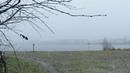 Хлопья снега у озера Красное. Красотища. Кемерово