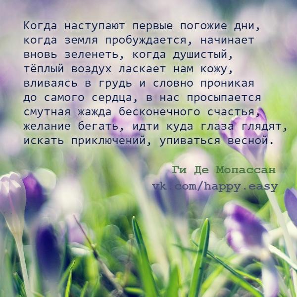 Обои На Телефон Весна