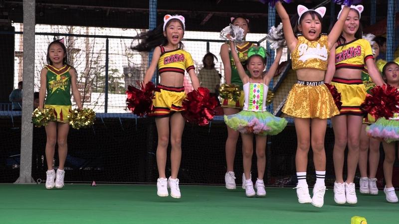 TEAM-HIMAWARI 2019.11.03 @\とこなめ焼/招き猫祭り