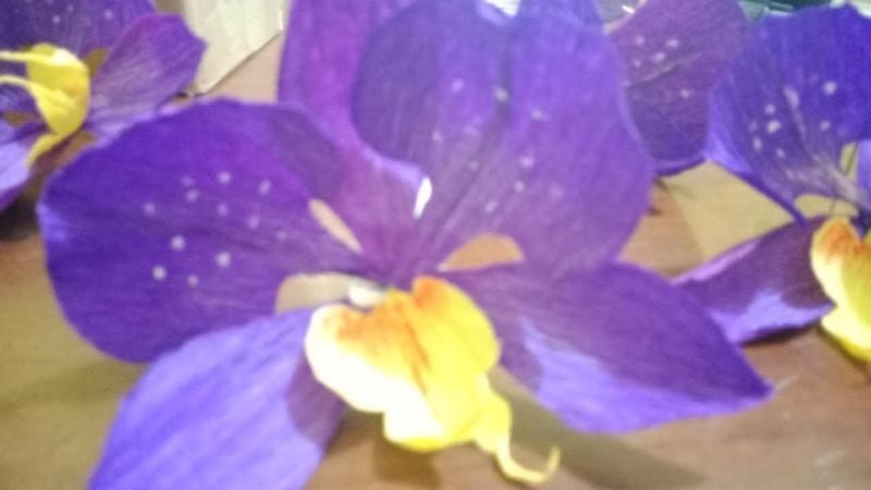 Kreasi Bunga Anggrek Bulan dengan Kertas Krep