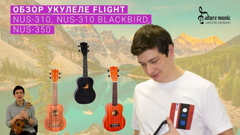 Укулеле Flight NUS 310 NUS 310 Blackbird NUS 350 Dreamcatcher Обзор укулеле сопрано Флайт