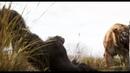 Книга джунглей 2016 — Русский трейлер HD