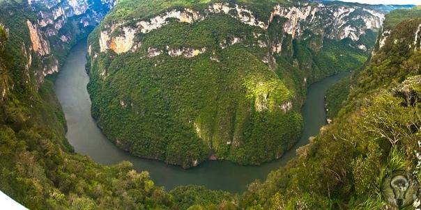 Каньйон Сумидеро. Мексика Каньон представляет собой классическое сочетание гор и реки Грихальва, которая их прорезает уже несчетное количество лет. По мнению ученых, формирование каньона