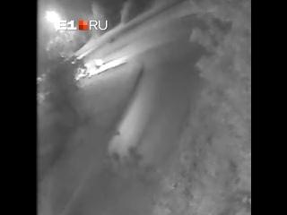 ДТП на въезде с Серовского тракта, где погибла девушка-пассажир мотоцикла