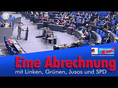 AfD Eine Abrechnung mit Linken Grünen Jusos und SPD