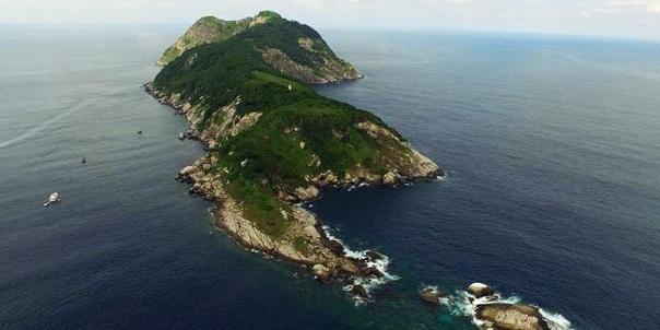 Бразильский остров ядовитых змей Кеймада-Гранди место вашего кошмара Кеймада-Гранди, также известный как Остров змей, это остров площадью всего около 0,43 км², но несмотря на его небольшие
