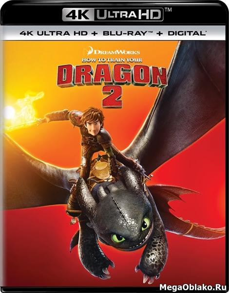 Как приручить дракона2 / How to Train Your Dragon2 (2014)   UltraHD 4K 2160p