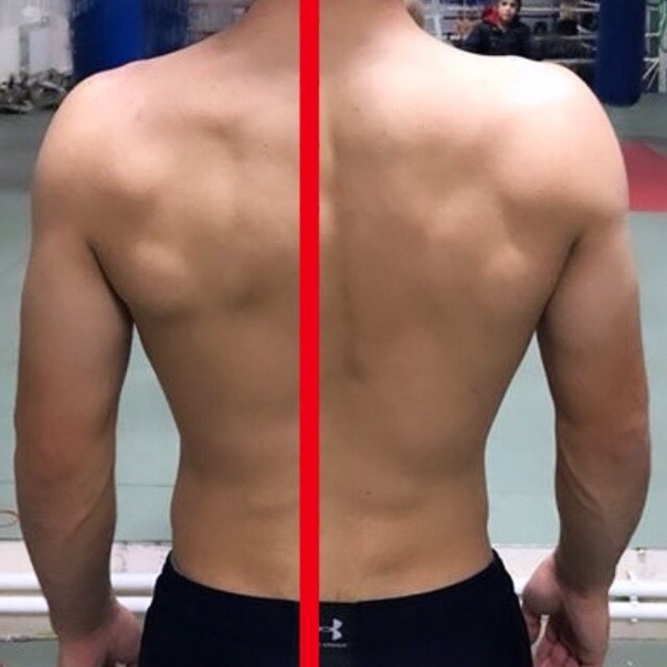 всегда редактор фото для выравнивания спины это