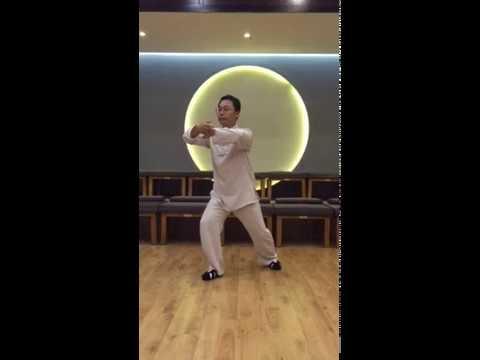 3 shi - ji shi в исполнении Мастера Ван Лина