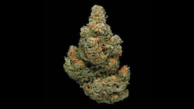 Granddaddy Purple Strain Buy Cannabis Strains And Discrete Delivery