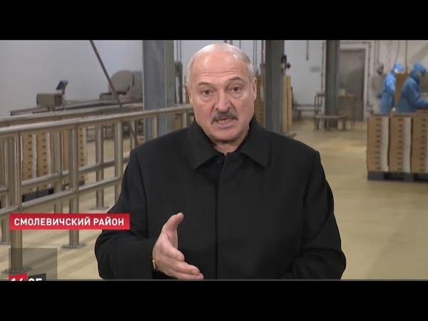 Лукашенко о коронавирусе Тут здоровый человек без детей заболеет от того что происходит вокруг