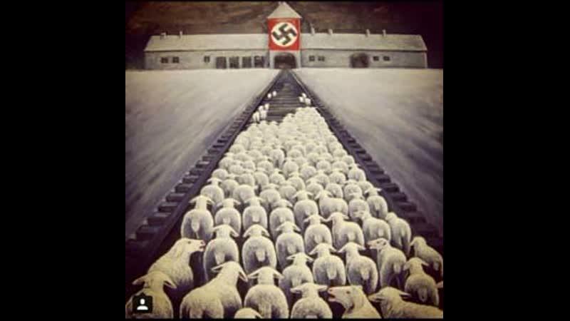 Ferma Animalelor george orwell