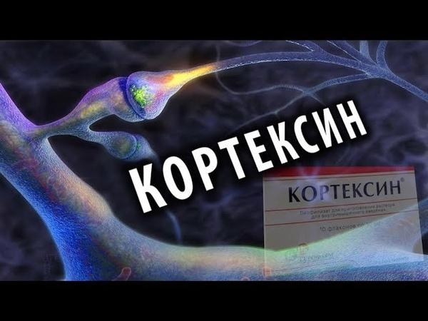 Кортексин Ноотроп из Мозга Животных