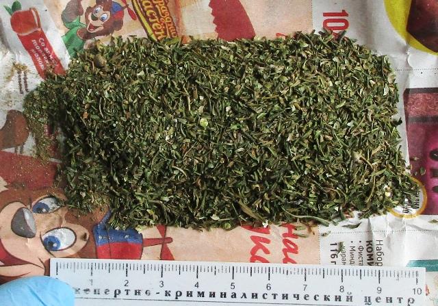 В Таганроге задержали 52-летнего мужчину с марихуаной массой 250 грамм