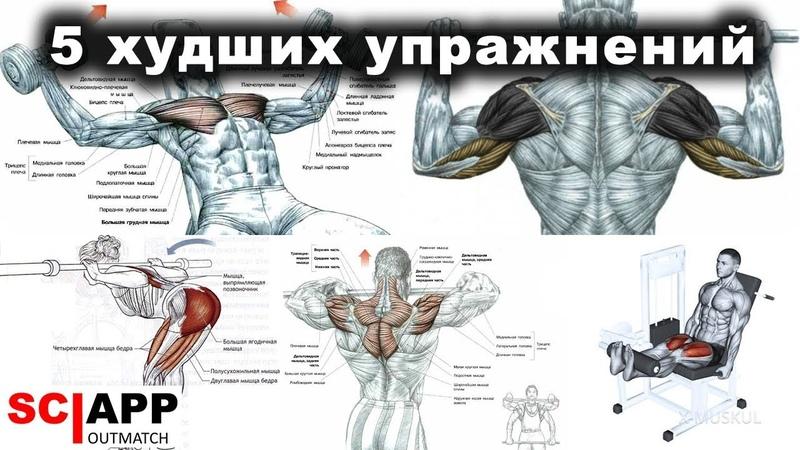5 Худших Упражнений Которые Гробят Ваше Здоровье Джефф Кавальер