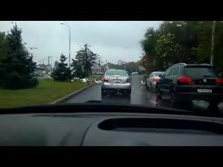 В Краснодаре гуси устроили настоящий дорожный коллапс.