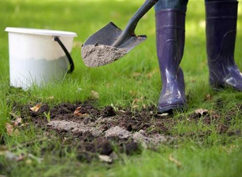 ЕЩЁ РАЗ ПРО ЗОЛУ Зола значительно улучшает структуру почвы, а также создает благоприятные условия для развития микрофлоры, особенно азотфиксирующих бактерий, улучшающих азотное питание растений.