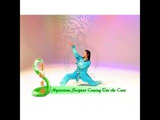 峨嵋蛇拳 (Snake Fist Emei Style) by 梁好 (Helen Liang)