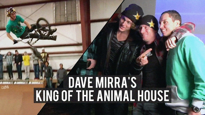 Dave Mirra's King of the Animal House insidebmx