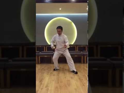 5 shi cai shi в исполнении Мастера Ван Лина