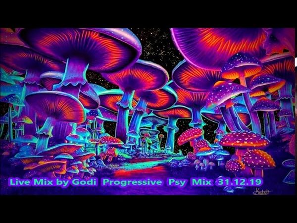 Live Mix by Godi Progressive Psy Mix 31 12 19