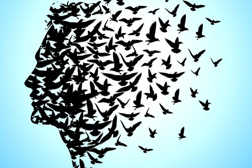 Концепции страдания. Жить, чтобы страдать или страдать, чтобы жить?, изображение №3