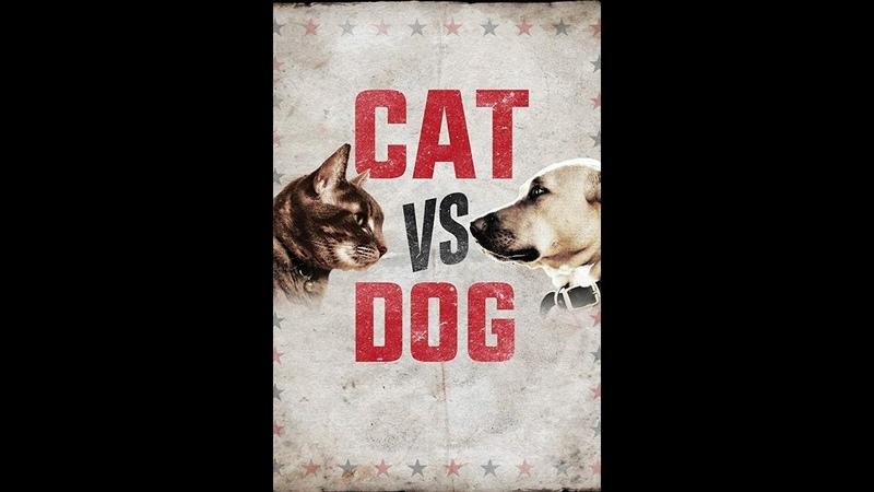 Кошка против собаки Cat Vs Dog 2017 7 серия Animal Planet
